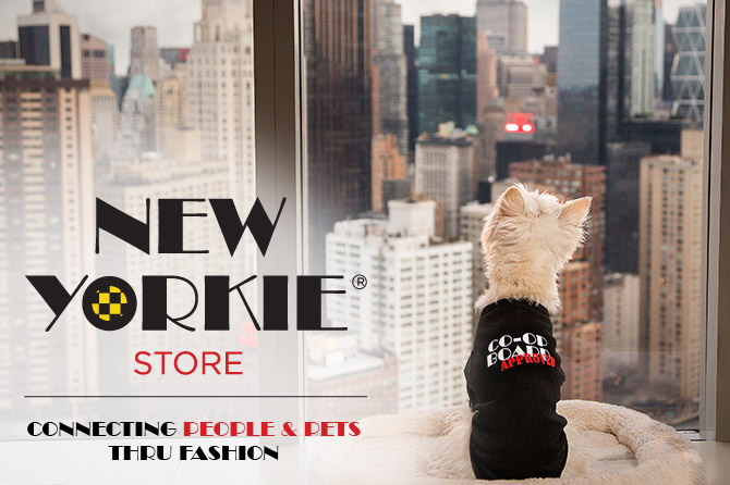 The New Yorkie Store