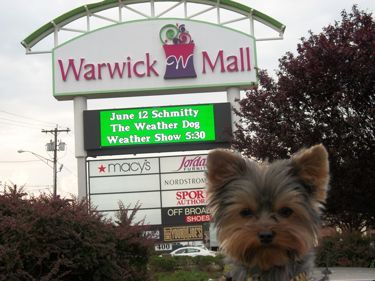 Does this sign make my ears look big? Arf-Arf!