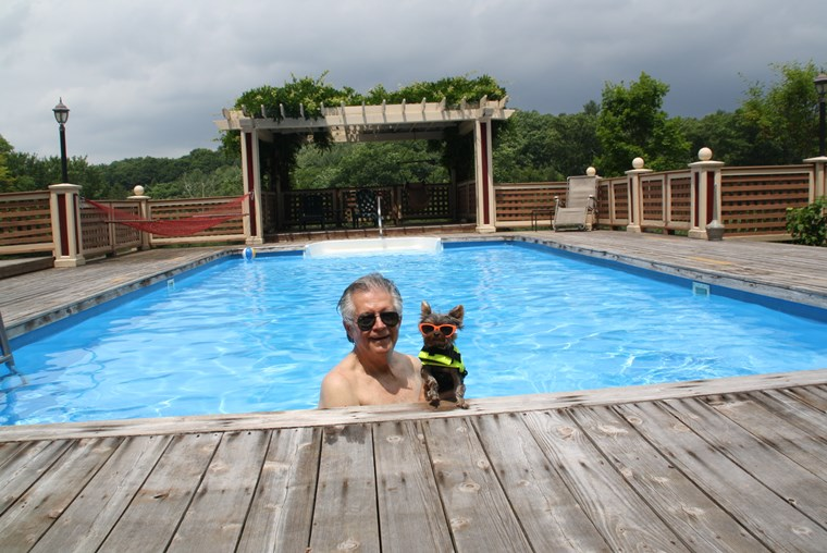 What a pawsome pool in the huge yard at the Inn at Lake Joseph. What's a yard?