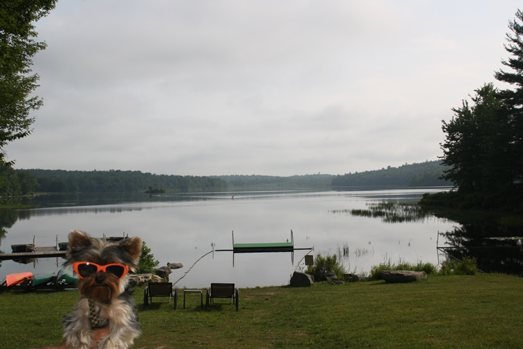 There's a lake for fishing, boating, kayaking. Even a special swimming crib for us pups. Now that's pet friendly!